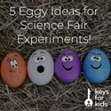 Ideas for Your Next Science Fair!