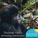 Discover God's Wild Creation!