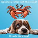 Would You Rather Walk Like a Dog or Like a Crab?
