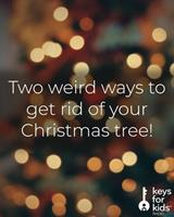 Weird Ways to Get Rid of Christmas Trees