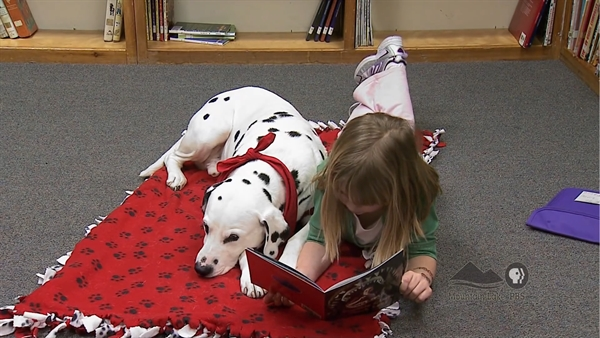 Reading to a Dog to build Confidence