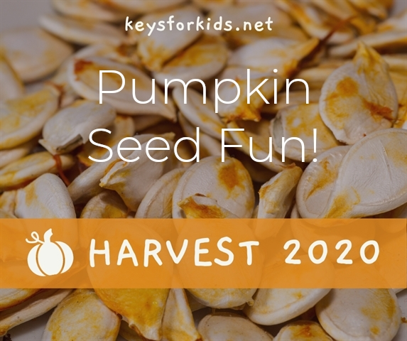 Pumpkin Seed Fun - Harvest Week!
