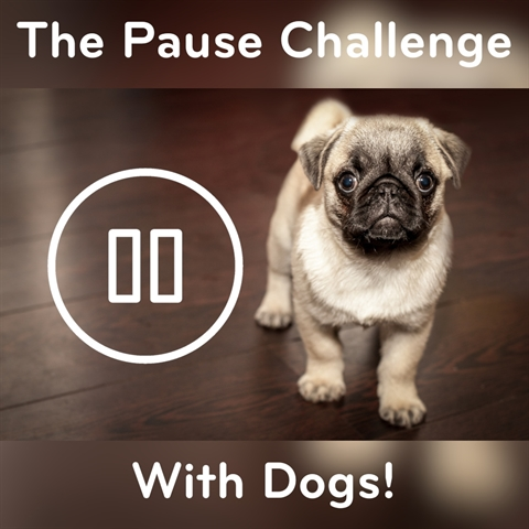 The PAUSE Challenge (DOGS)