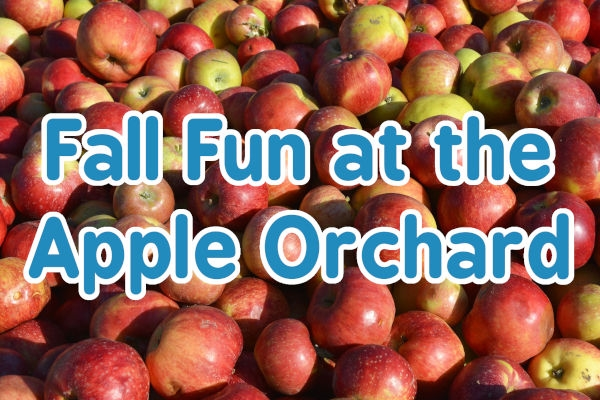 Fall Fun at the Apple Orchard