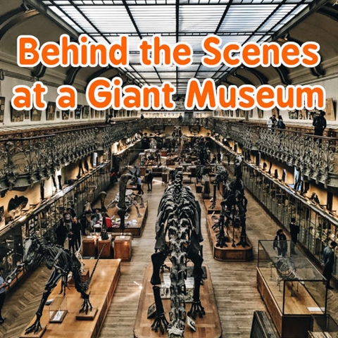 Behind the Scenes of the Biggest Museum in the United States!
