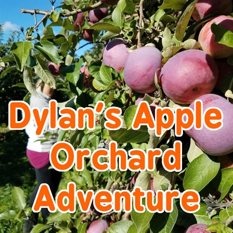 Dylan and His Apple Orchard Adventure