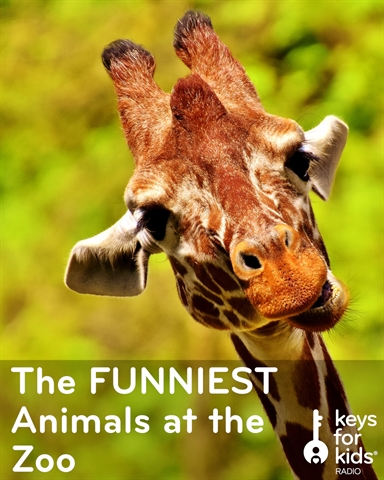 The FUNNIEST Animals Meet the FUNNIEST Kids at the Zoo