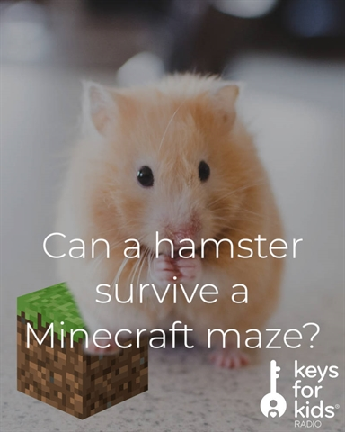 Will the Hamster Survive the Minecraft Maze?
