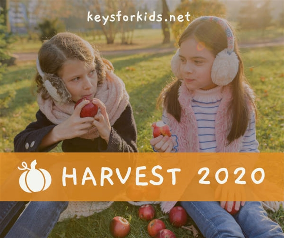Happy for the Harvest - Harvest Week!