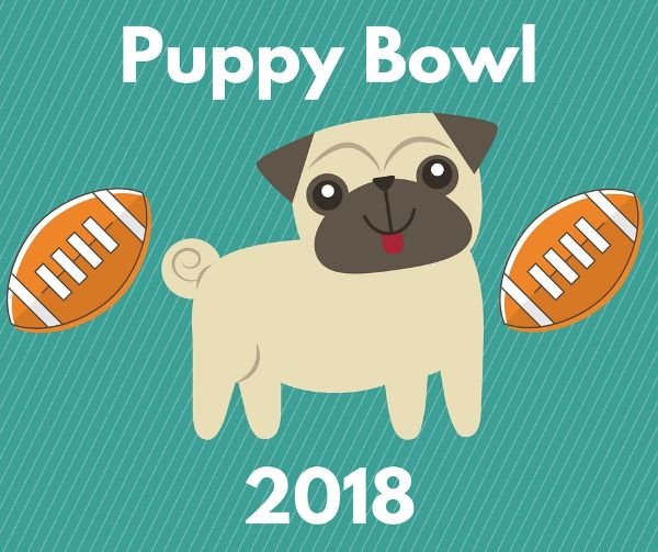 Get Ready for Puppy Bowl 2018