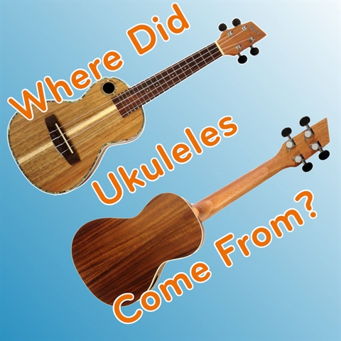 Where Did Ukuleles Come From?