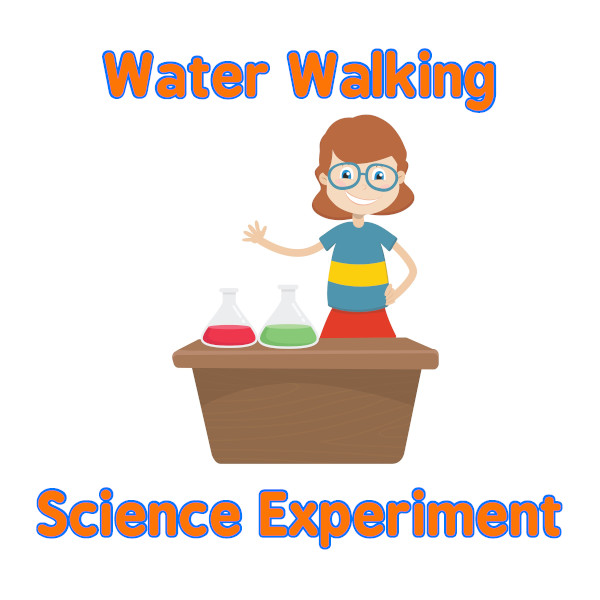 Try This Water Walking Science Experiment :)