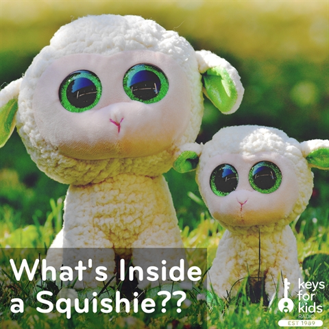 What's INSIDE a SQUISHY?