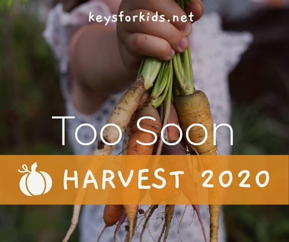 Too Soon - Harvest Week!